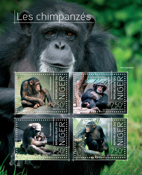 Chimpanzees - Issue of Niger postage stamps