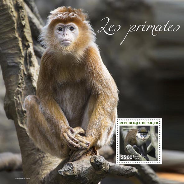 Primates - Issue of Niger postage stamps