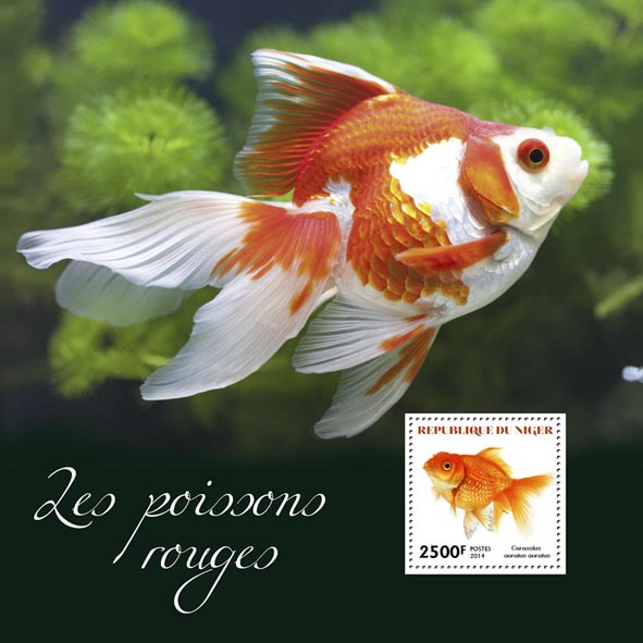 Goldfishes - Issue of Niger postage stamps