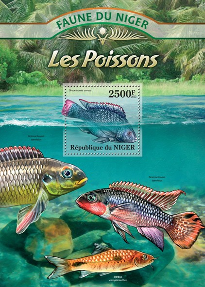 Fishes - Issue of Niger postage stamps