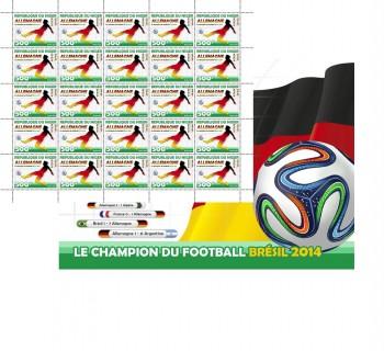 niger-01-08-2014-brazil-2014-code-nig-football.jpg