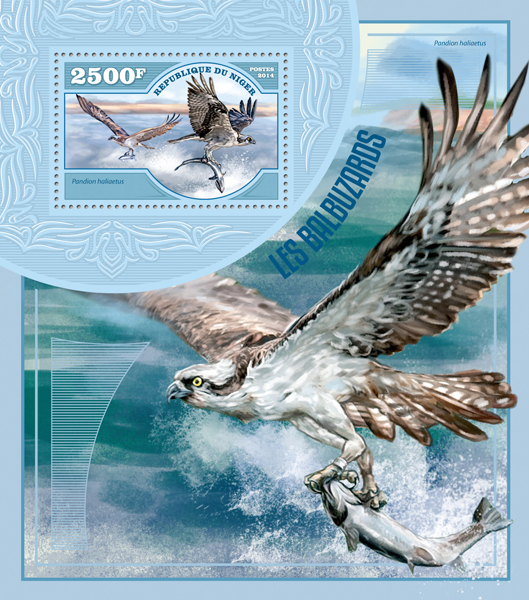 Ospreys - Issue of Niger postage stamps