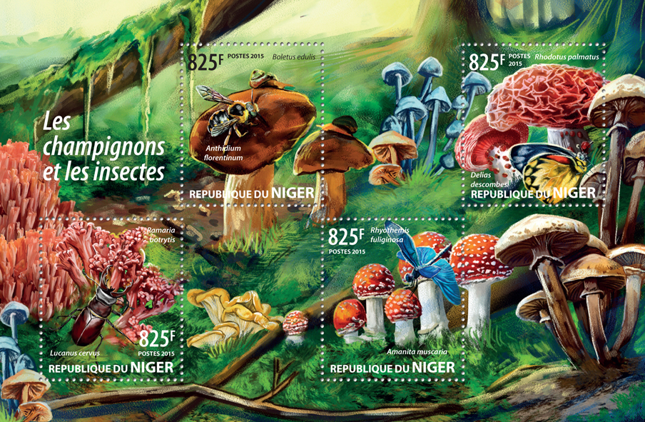 Mushrooms and insects - Issue of Niger postage stamps