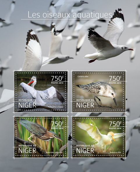 Water birds - Issue of Niger postage stamps