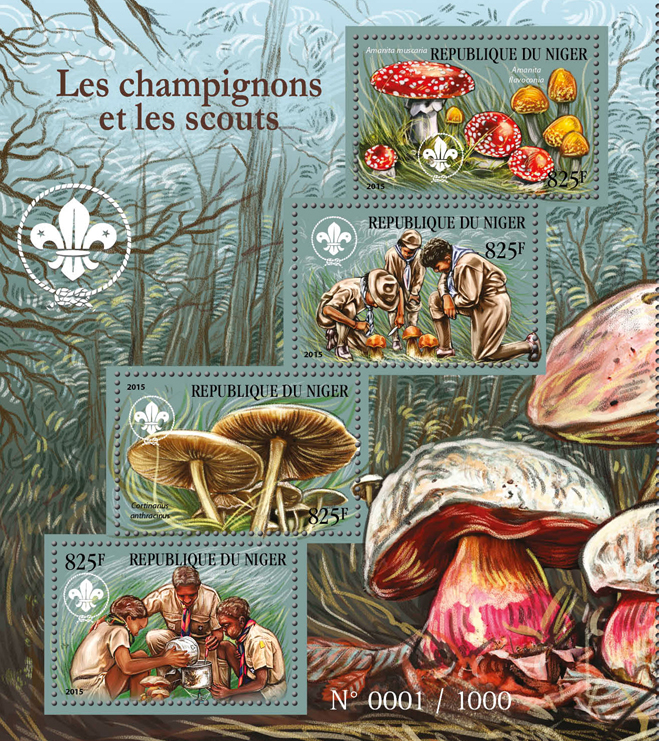 Mushrooms and scouts - Issue of Niger postage stamps