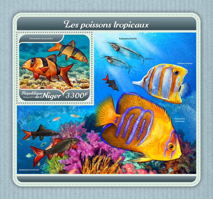 Tropical fishes - Issue of Niger postage stamps