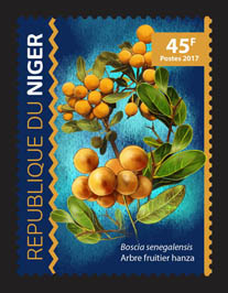 Hanza fruit tree - Issue of Niger postage stamps