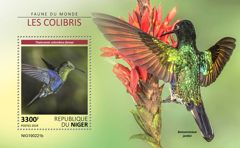 Colibri - Issue of Niger postage stamps