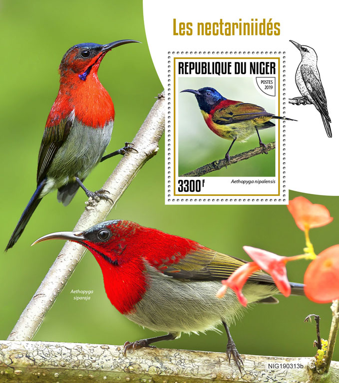 Sunbirds - Issue of Niger postage stamps