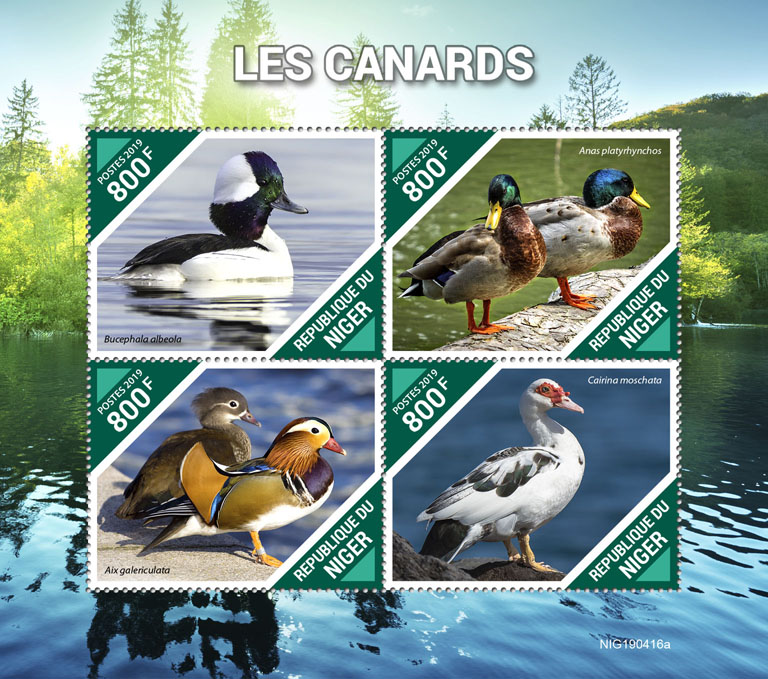Ducks - Issue of Niger postage stamps