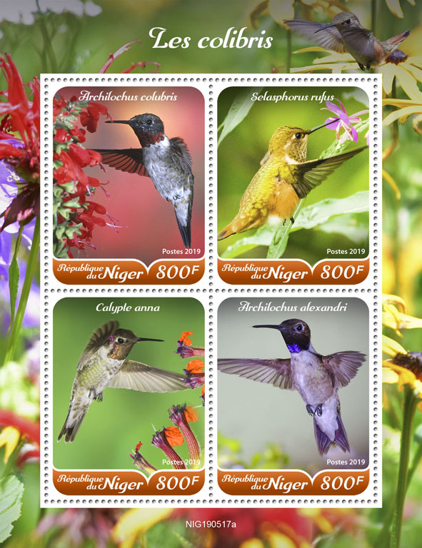 Hummingbirds - Issue of Niger postage stamps
